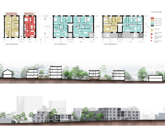 plans de logements & coupes