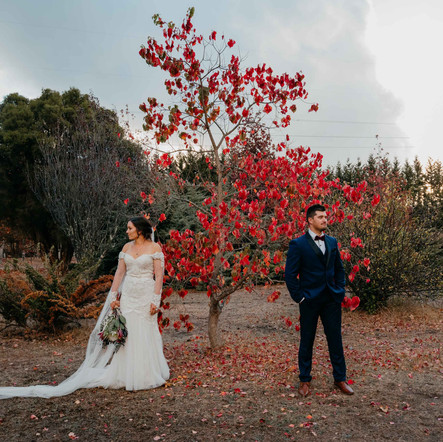 A Backyard Wedding In Collie, Southwest WA
