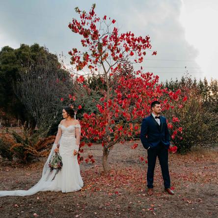 A Backyard Wedding In Collie, Southwest WA