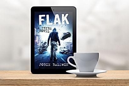 FLAK ereader.jpg
