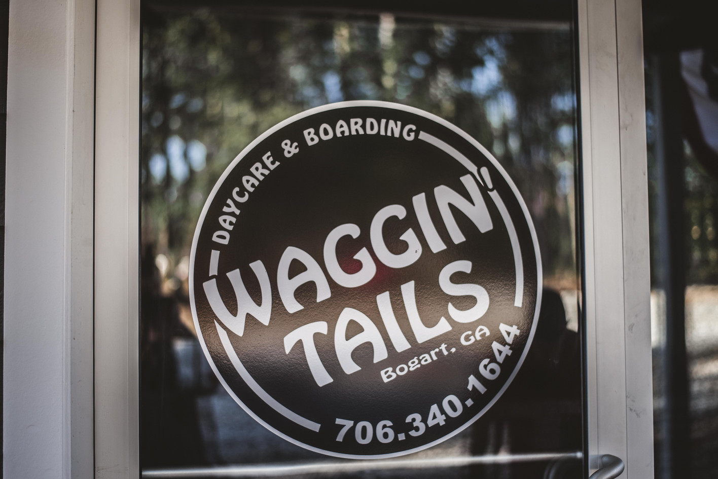 waggintails.acp-5.jpg