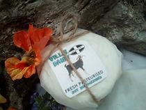 Cornish Goat Cheese