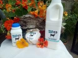 Cornish Goat Milk Products