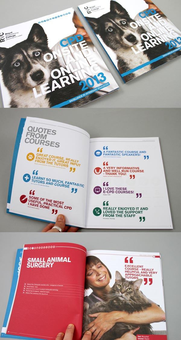brochure+designs+2013+10.jpg