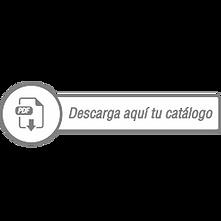 Boton%20descarga_edited.png