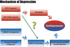 양극성 우울증 치료제 성분 D-Cycloserine 특허
