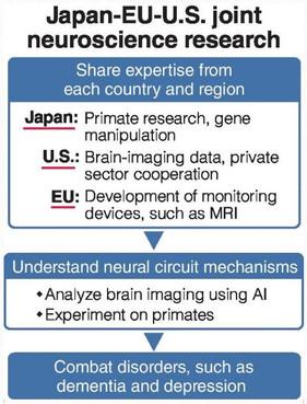 일본 정부,  뇌과학연구 국제 협력 강화