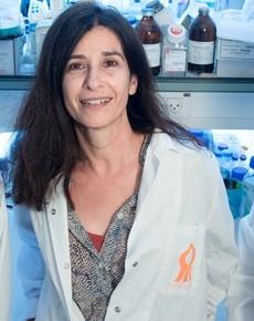 ALS 환자를 위한 새로운 치료제 개발 연구
