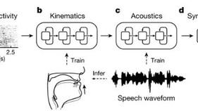 피질뇌파 기반 음성합성 연구