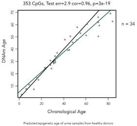 Zymo Research 후생유전학적 시계 판매