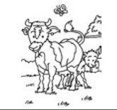 dessin humoristique vache.JPG