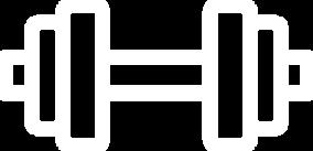 Icon Hantel