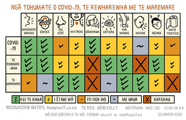 Covid-19 Flu Cold Symptoms v4 Te Reo.jpg
