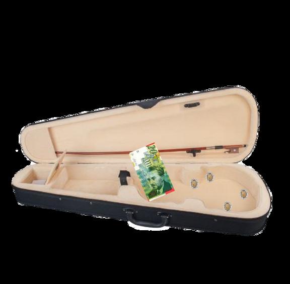 קופסת כינור.png