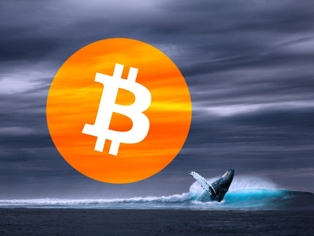 An Increasing Number Of Bitcoin Whales Are Adding To The Upwards Price Pressure Of Bitcoin