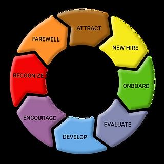TalentManagement-Graphic.png