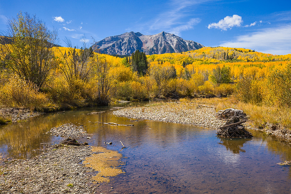 The mountains of Crested Butte nestled in a blanket of yellow aspens in autumn.