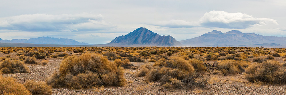 A desert landscape of scrub brush just outside Death Valley National Park extends for miles to the base of distant mountains under an overcast sky.