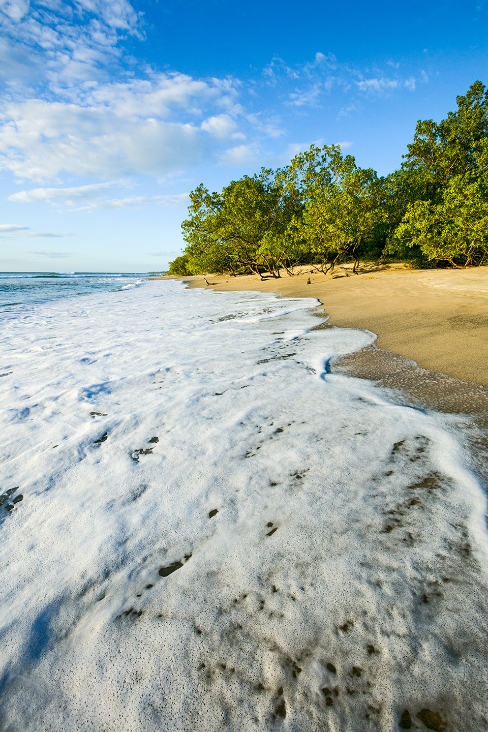 A foamy wave rushes the shore on a sunny day in Costa Rica.