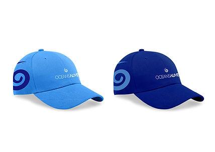 Oceans Alive C.I Branding4.jpg