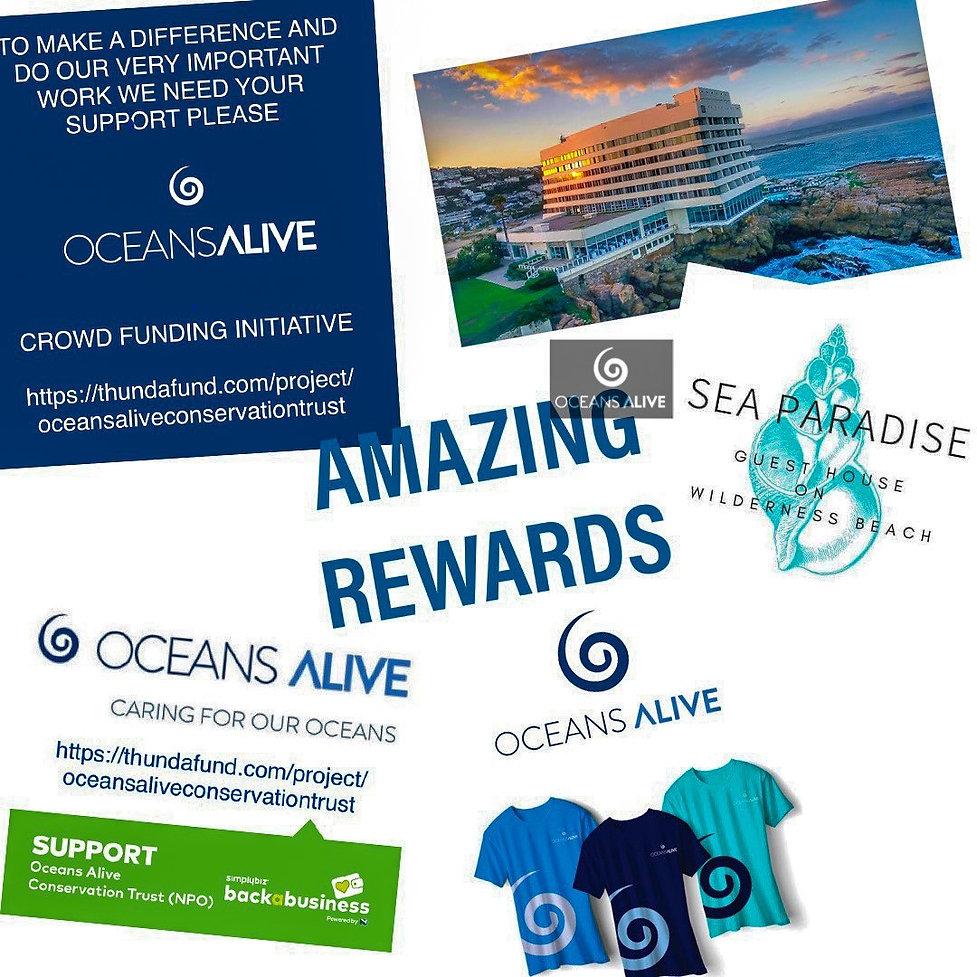 OCEANS ALIVE CROWD FUNDING 9.jpg