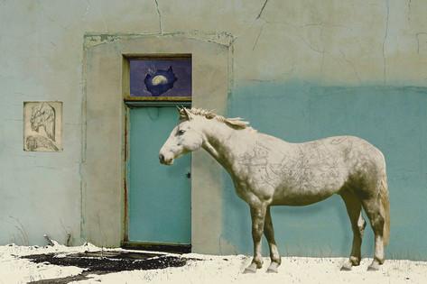 Dapple Grey: Dreams of Childhood