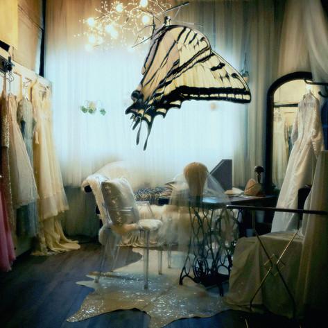 Betrothal: Wedded to Lightness
