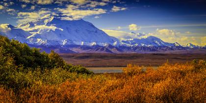 Denali: Autumn Gold II