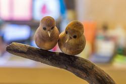 el-nicho-mary-ortega-bird7