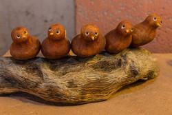 El Nicho Santa Fe | Mary Ortega Bird