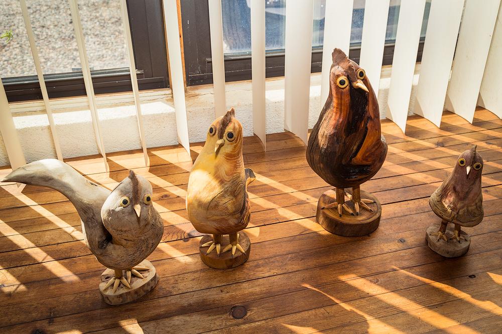 el-nicho-mary-ortega-bird13