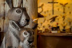 Joe Ortega's Rabbits at El Nicho
