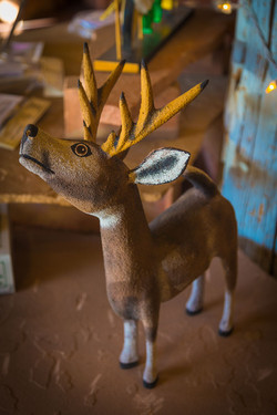 Joe Ortega's Deer