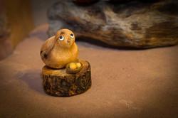 el-nicho-bird-nest