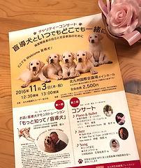 盲導犬 イベント