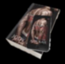 2020_SOH_Paperback-iphone.png