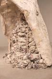 Chrysalis (close up)