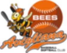 Logo Avigliana Bees.jpg