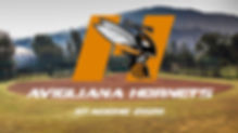 Logo Hornets Stagione 2020.jpg