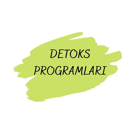 STANDART PROGRAM (4).png