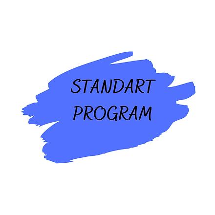STANDART PROGRAM (3).png