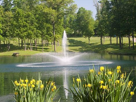 плавающий фонтан Daffodil, плавающий фонтан купить