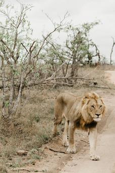 christinakarstphotography_southafricaelo