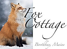 foxlogoimage copy.jpg