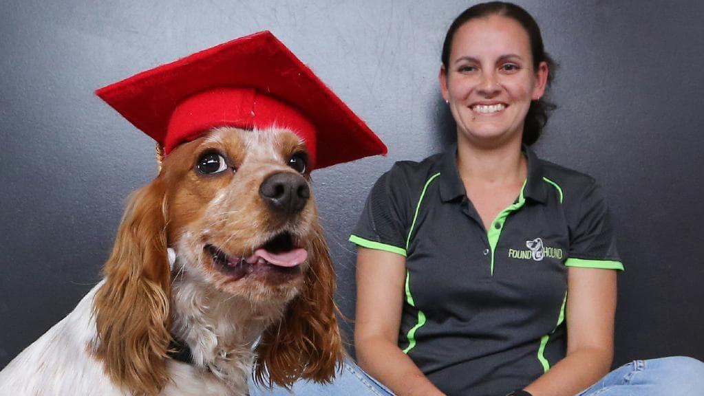 Gold Coast Dog Trainers