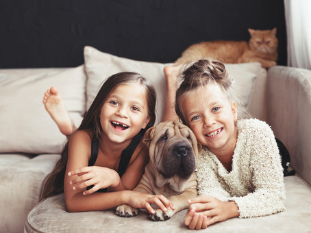 TOP TIPS FOR PARENTS LIVING WITH SMALL CHILDREN AND DOGS