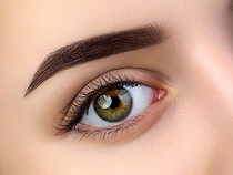 Gold Coast Eye Brow Wax