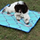Thumbnail: Indoor Placement Training Mat