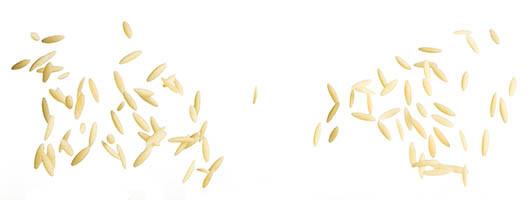 orzo-igp-pasta-garofalo-durum-wheat-semo