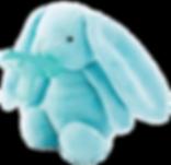 Sleep Buddy - Blue Bunny.png